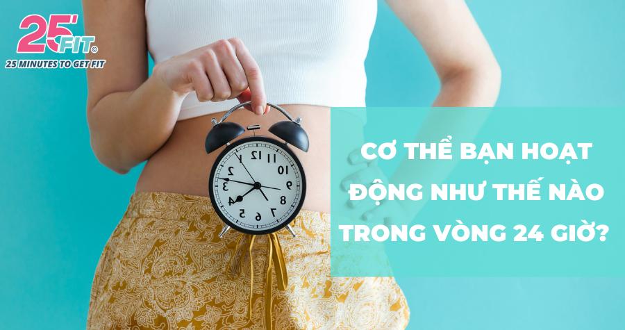 Bạn đã nắm rõ đồng hồ sinh học của cơ thể chưa?