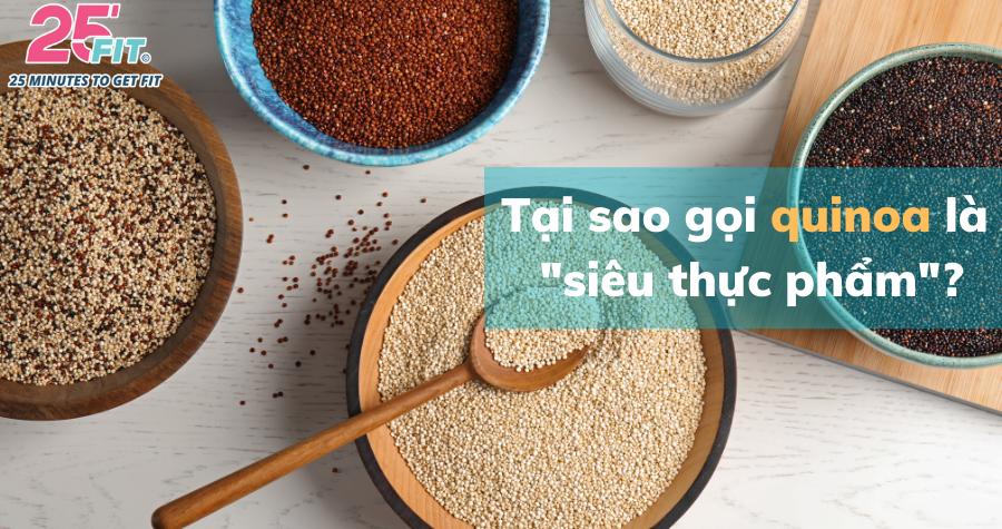Quinoa: một trong những loại ngũ cốc lành mạnh nhất thế giới